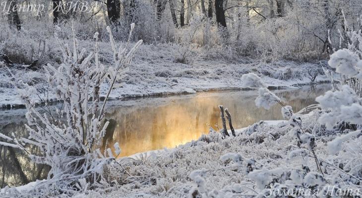 And Winter Came. Целительная природа.