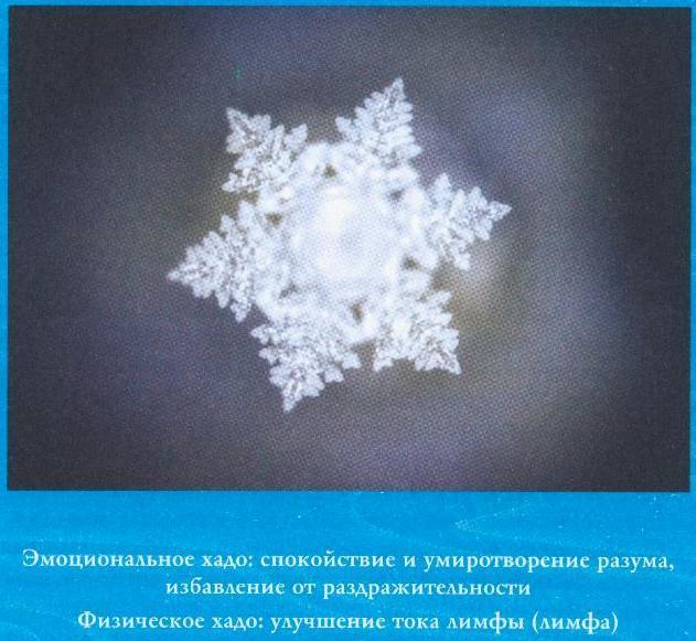 Исцеление кристаллами воды масару эмото книга скачать