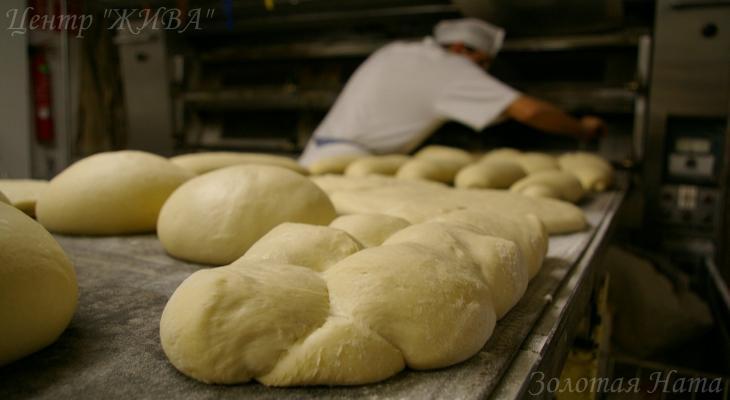 Интуитивное Рэйки. 1 уровень. Честно зарабатывай свой хлеб!