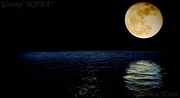 Llewellyn - Moon Spells (2013)