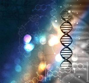 Трансформатор генетического кода