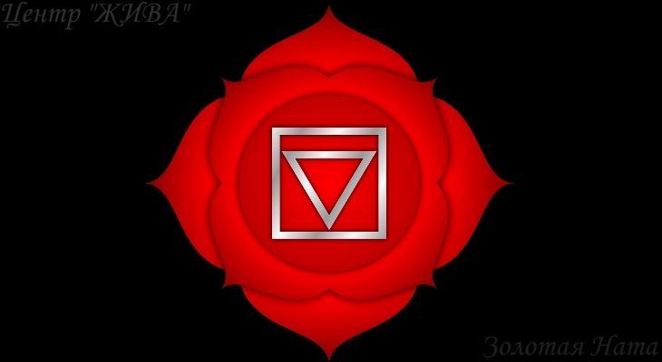 Медитация Первая чакра. Золотая Ната