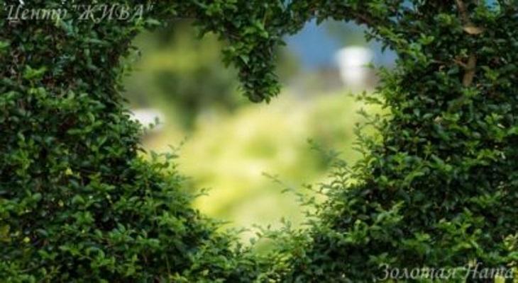 Любовь – насыщающее чувство.