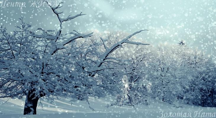 Погружение в снежность.