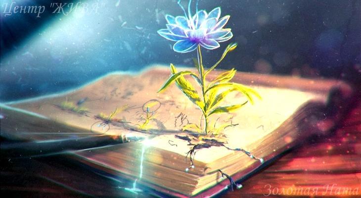 Как написать свою книгу жизни. Рождение