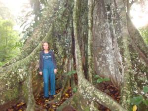 Татьяна Рубашкина. Перу. Дерево
