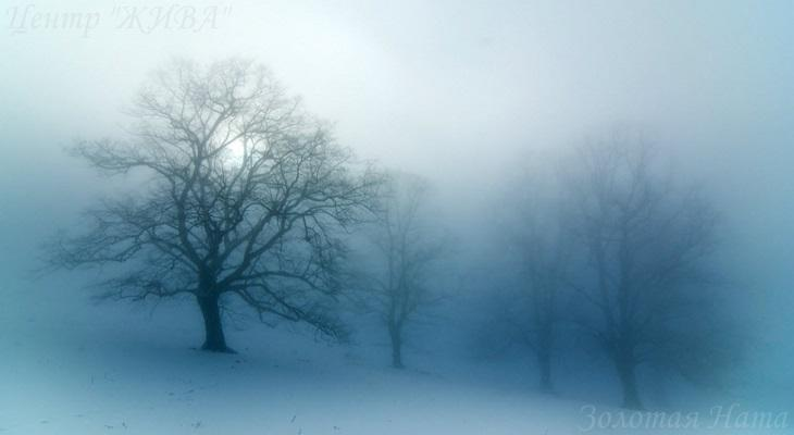 Прогноз на неделю – Туман.