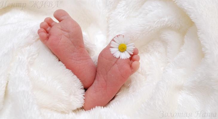 Стихии, данные при рождении