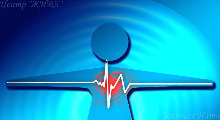 7 мифов о здоровье сердца 2.