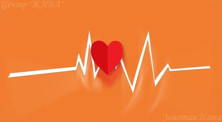 7 мифов о здоровье сердца