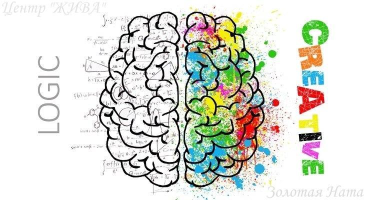Здоровье. Мозг. Задайте вопросыЗдоровье. Мозг. Задайте вопросы
