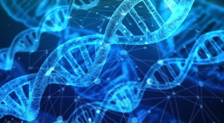Целительный сеанс с энергией Трансформатор Генетического Кода